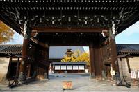 2020京都の紅葉・西本願寺 - デジタルな鍛冶屋の写真歩記