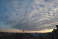 朝陽を受けるまだら雲(層積雲) - 日々の風景