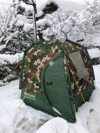 雪の中のサウナ - 東京ガーデニングスタイル~ガーデン日和~