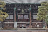 雪の清凉寺 - Taro's Photo