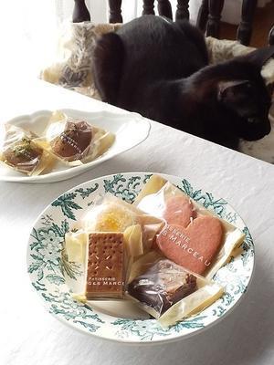 「パティスリージョルジュマルソー」さんの焼き菓子 - キッチンで猫と・・・