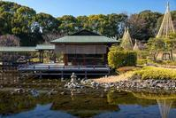 白鳥庭園 - 休日PHOTOブログ