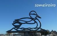 三橋総合公園1月17日。 - 染め色・いろいろ