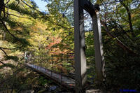 大台ケ原~シオカラ谷から帰路 - katsuのヘタッピ風景