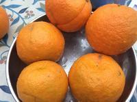 セルビアオレンジの季節なので、マーマレード作りです - イギリス ウェールズの自然なくらし