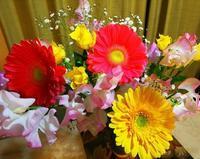 春の香 - 人生楽しんだもの勝ち!