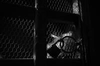 Locked - 節操のない写真館