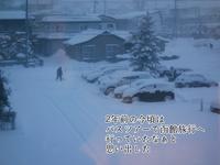 函館旅行の思い出 - 手ぬぐいとかめら