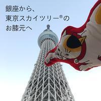 銀座店移転のお知らせ - 京東都 BLOG