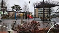 雨の公園 - 台町公園ブログ