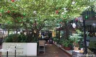 94. 常夏の国に春が来た! / ペンドラスコPendolasco - ホーチミンちょっと素敵なカフェ・レストラン100