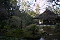 冬のある日南禅院 - 京都ときどき沖縄ところにより気まぐれ