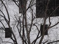 冬木 - 四十八茶百鼠(2)