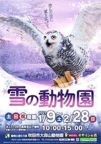 雪の動物園2021 - 動物園放浪記