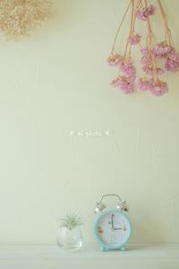 こんなの欲しかったんです。 - Yuruyuru Photograph