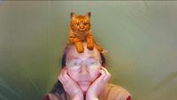 猫をかぶる - 絵を描きながら