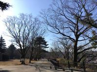 公園めぐり - まいにちノート(2冊目)