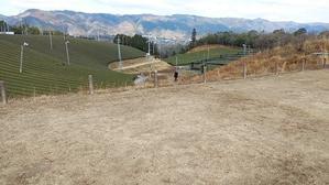 京都 南山城村自然の家でネヴィスTCお試しキャンプ その2 - 気ままにソロツー@関西