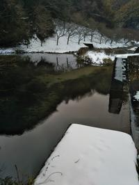 雪と焼きカレー - 福岡おでかけと食日記