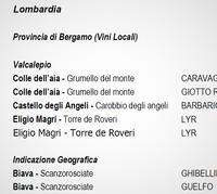 地元のワインヴィーノ・ロカーレ - イタリア的生活【イタリアのエノテカで働いた、バガボンド・ソムリエのアルバム】