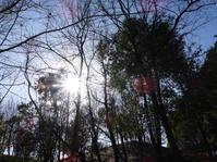 1月28日(木)ぬか喜び - 庄原市上野公園(上野池)とその周辺の出来事