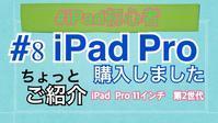iPad Pro買いました - 片方だけのパンプス