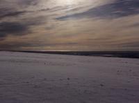 今日は溶けちゃった雪ですが。 - イギリス ウェールズの自然なくらし