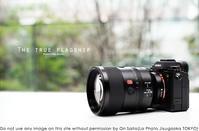 sony α1を買わない理由を「重いから」にしようと思ってた - さいとうおりのお気に入りはカメラで。