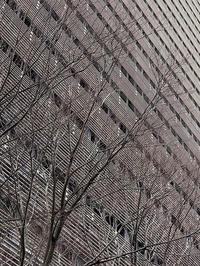 2021/01/28SONY α1を触ってみた! - shindoのブログ