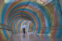 虹のトンネル - チンク写真館
