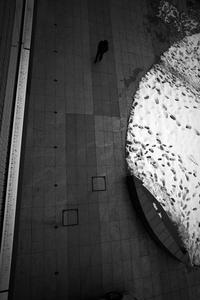 駅南と万代口20210126 - Yoshi-A の写真の楽しみ