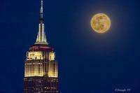 Wolf Moon 2021 - Triangle NY