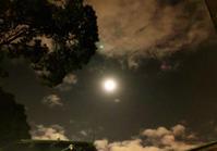 満月の夜に〜この冬唯一の札幌公演〜 - マコト日記
