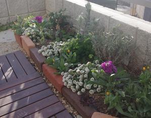 理想の庭 - 丘のうえ