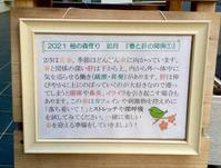 柚の森便り『春と肝の関係①』 - 柚の森の仲間たち