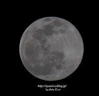 今年初めての満月撮りました - 4にゃん日記+