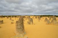 [今日の1枚]オーストラリア西海岸:奇岩が連なるピナクルズに行ってきた。 - 沖縄発-リーマン経営診断トラベラー ~俺流はこれだ~