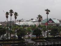 2020.11.02 鹿児島港にナッチャンword - ジムニーとハイゼット(ピカソ、カプチーノ、A4とスカルペル)で旅に出よう