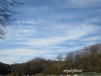 1月の里山散歩 - 風と花を紡いで