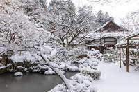 雪の滋賀2021金剛輪寺・庭園編 - 花景色-K.W.C. PhotoBlog