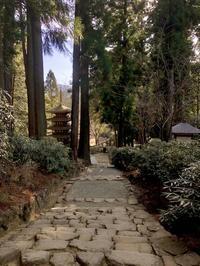 奈良の旅  10  室生寺 息切れしながら奥の院へ - FK's Blog