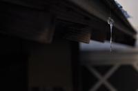 蜘蛛の糸 - Photism