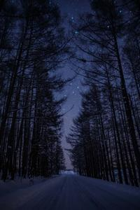 Starry Road - 山歩き川歩き