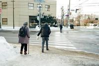 横断歩道とハーフホワイトアウト - 照片画廊