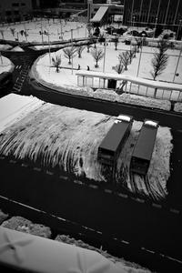 雪国だったころ#01 20210112 - Yoshi-A の写真の楽しみ