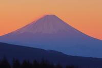 霧ヶ峰からの富士山 - Today's action