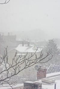 スノーストーム到来で休校となった月曜日 - NY/Brooklynの空の下