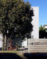 どんなふうに青空を切り取るか冬の陽光のなかの久里浜の家にて - 横須賀から発信|小形 徹 * 小形 祐美子 プラス プロスペクトコッテージ 一級建築士事務所