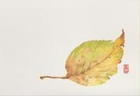 葉の色彩 - 青山一樹 水彩画のひととき