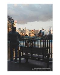 春はじめ - ♉ mototaurus photography